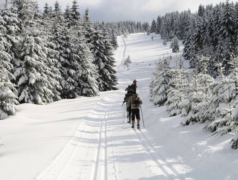 Langlauf in Schierke - Foto: Nationalpark Harz