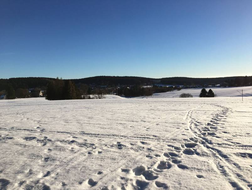 Winterimpression bei Buntenbock