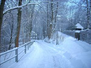 Winterkurpark und Winterwanderung in Bad Lauterberg