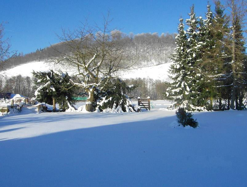 Winterlandschaft in Bad Lauterberg - Foto: Stadtmarketing Bad Lauterberg